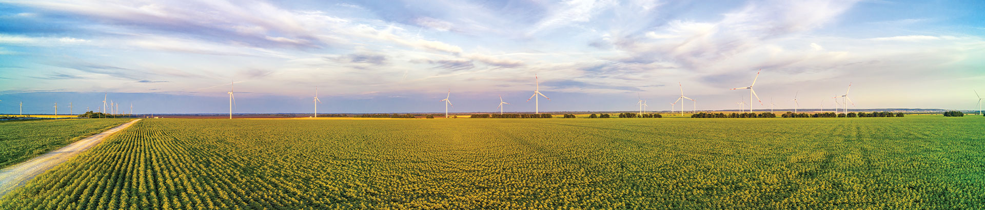Ultrasonic Wind sensors for Turbines